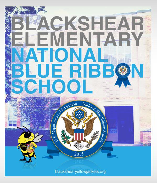 National Blue Ribbon School Flyer